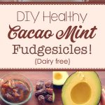 DIY Healthy Cacao Mint Fudgesicles! (Dairy Free)
