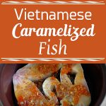 Vietnamese Caramelized Fish