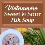 Vietnamese Sweet & Sour Fish Soup