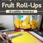 Easy Homemade Fruit Roll-Ups | Healthy Snacks