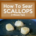 How To Sear Scallops – 1 Minute Tips