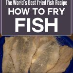 The World's Best Fried Fish Recipe – How To Fry Fish