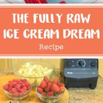 The FullyRaw Ice Cream Dream
