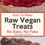 Raw Vegan Treats: No Bake, No Fake!