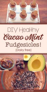 DIY Healthy Cacao Mint Fudgesicles (Dairy-free)