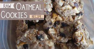 Raw Oatmeal Cookies Recipe