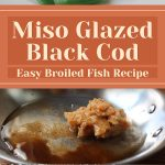 Miso Glazed Black Cod – Easy Broiled Fish Recipe