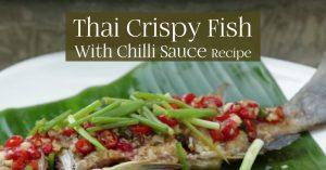 Thai Crispy Fish With Chilli Sauce, Duncan's Thai Kitchen