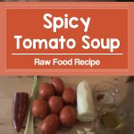 Raw Food Recipe: Spicy Tomato Soup