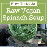 Raw Vegan Spinach Soup