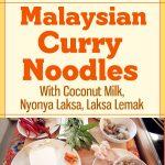 Malaysian Curry Noodles With Coconut Milk / Nyonya Laksa / Laksa Lemak