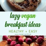 Lazy Vegan Breakfast Ideas! (Healthy + Easy)