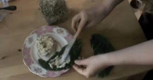 Raw Vegan Almond Cheese Recipe