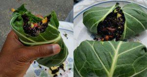 Raw Vegan Black Rice Burrito Wrap
